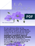 LALINAZA_10_AL