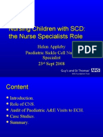 Nursing in the Hospital- Presentation for Haem Course Ppthe