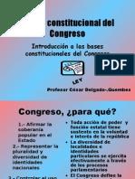CDG - Marco constitucional del Congreso