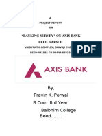 Pravin Axis Bank Project