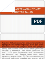 PEMULIAAN TANAMAN TOMAT