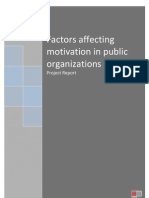 Factors Affecting Motivation in Public Organizations