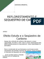 Ref Lore Stamen To e Sequestro de Carbono 2 (2)