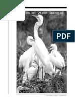 Birds of West Bengal
