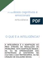 Processos cognitivos - inteligencia