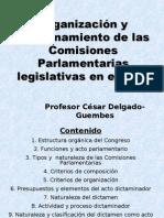 CDG - Organización y funcionamiento de las Comisiones Ordinarias en el Perú