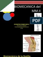 Biomecanica MMII (rodilla)