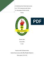 Laporan Pendahuluan Dan Asuhan Keperawatan DHF
