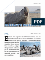 Elefante marinho