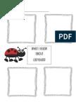 Eric Carle Ladybug Graphic Organizer