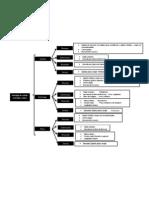 Histología de cardias, estómago y píloro (1)