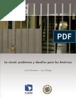 La cárcel, problemas y desafíos para las américas