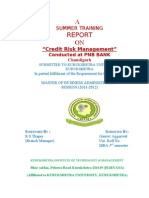 """Credit Risk Management"""