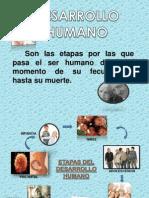 Desarrollo Humano-Etapa Prenatal