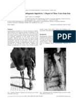 Congenital Bovine Epitheliogenesis Imperfect A a Report of Three Cases From Iran
