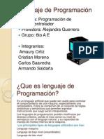 Lenguaje de ProgramaciÃ_n trabajo powerpoint alejandra