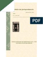 BolCivil-2-2009 CNAC.PDF