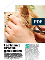 Tackling Errant Groomers