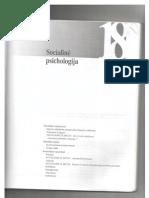 Socialine psichologija (18 skyrius)