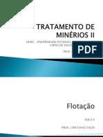 6 - TMII - FLOTAÇÃO