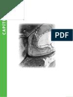 Anatomia_Vegetal_-_Capitulo_01