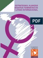 Estrategias, alianzas y desafíos feministas en materia de litigio internacional