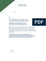 Tdr Consultoria Seleccion y Diagnostico e.1