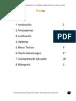 Protocolo Puente Pedro Joaquin Chamorro Solo Puente