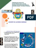 Proyecto Genoma M Luis Bravol