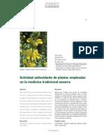 Plantas antioxidantes de Navarra