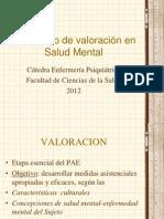 El_proceso_de_valoraci_n_en_Salud_Mental
