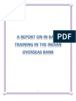 Bank Traning Project Report on IOB Bank