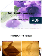 Praktikum Farmakognosi Herba Folium