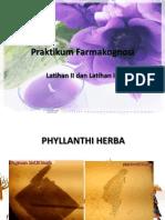 Praktikum Farmakognosi Herba Folium
