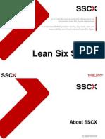 Lean Six Sigma ExBrie Pos