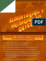 Alimentación y nutrición en cuyes  www.peru-cuy.com