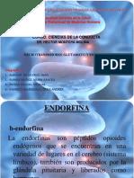 Glutamato y as - Copia