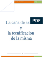 ENSAYO DE PROYECTO