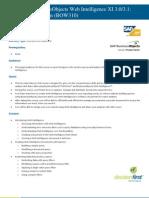 Web Intelligence Report Design