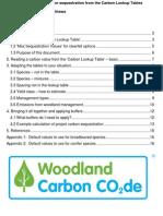 UK Carbon Lookup Gidance