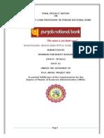 Final Project - Credit Mgt. PNB