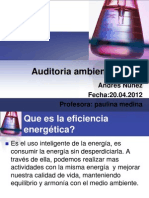 Auditoria Ambiental 2012