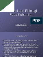 Anatomi & Fisiologi Kehamilan