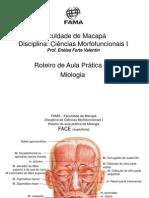 ROTEIRO DE AULA PRÁTICA DE MIOLOGIA