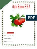 sba-110522091430-phpapp01