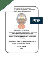 Manual de Org y Funciones Para Ent Descentraliza AUDITORIA UMSA