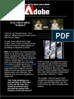 Why We Love Adobe