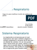 Sistema Respiratorio modificado 2