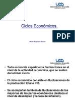 Ciclos Eco Pres (2)