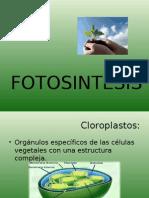 Fotosintesis Blog